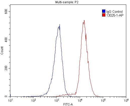 FC experiment of Raji using 13025-1-AP