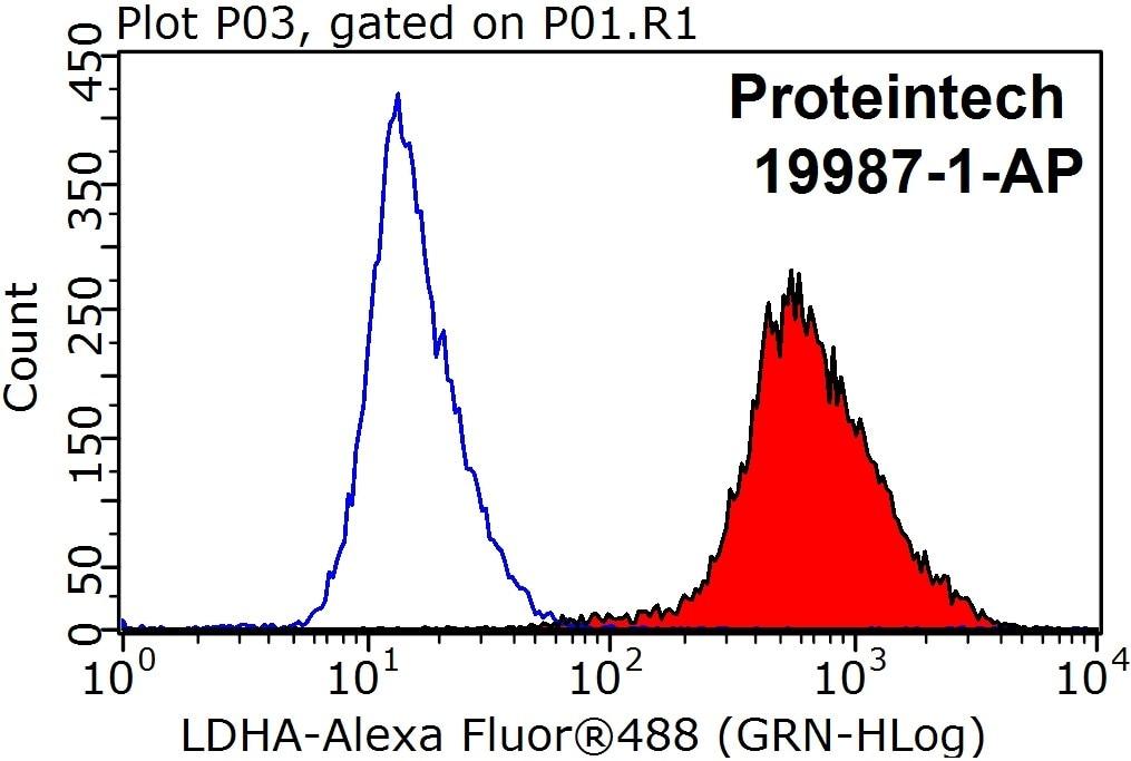FC experiment of HepG2 using 19987-1-AP
