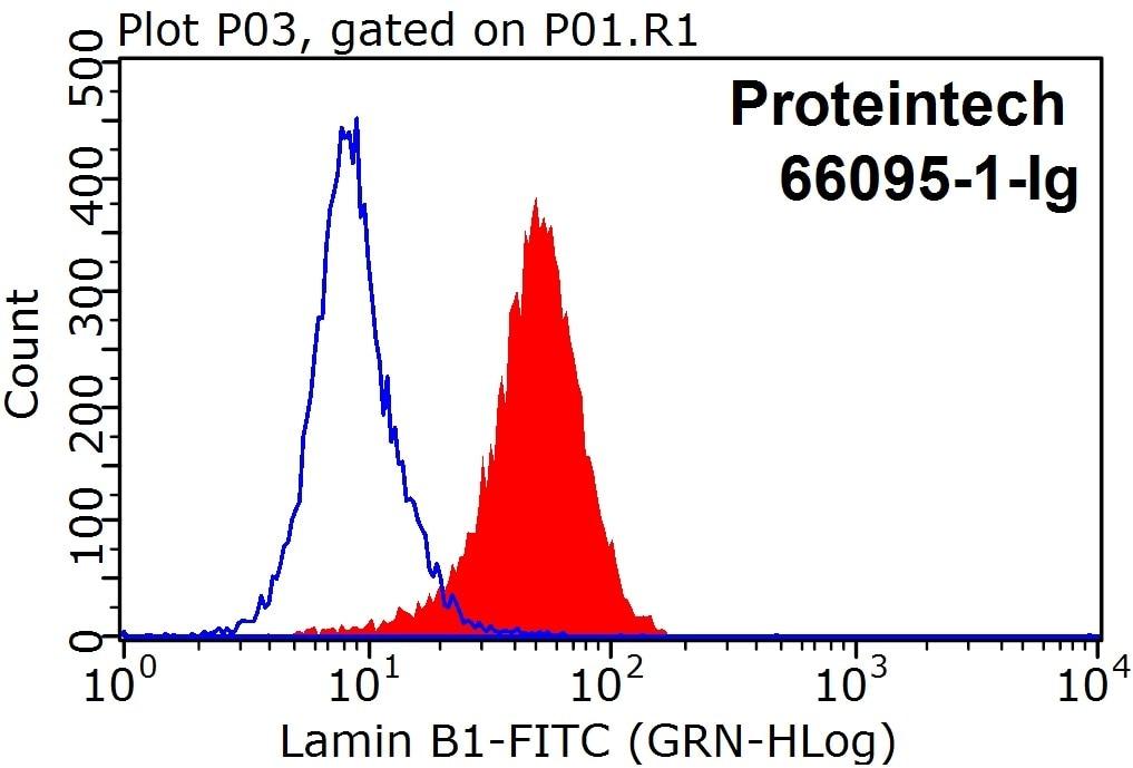 FC experiment of HeLa using 66095-1-Ig