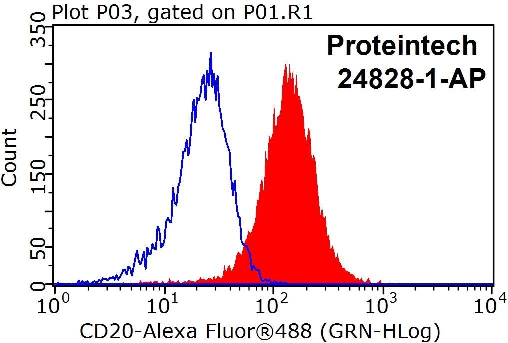 FC experiment of Raji using 24828-1-AP