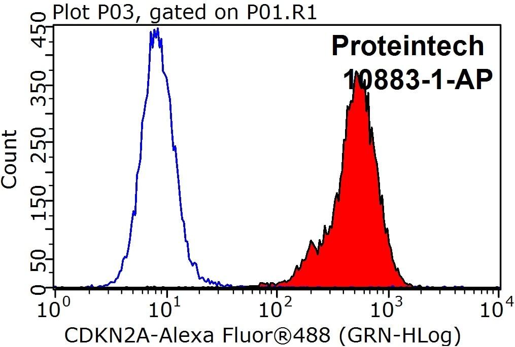 FC experiment of HeLa using 10883-1-AP