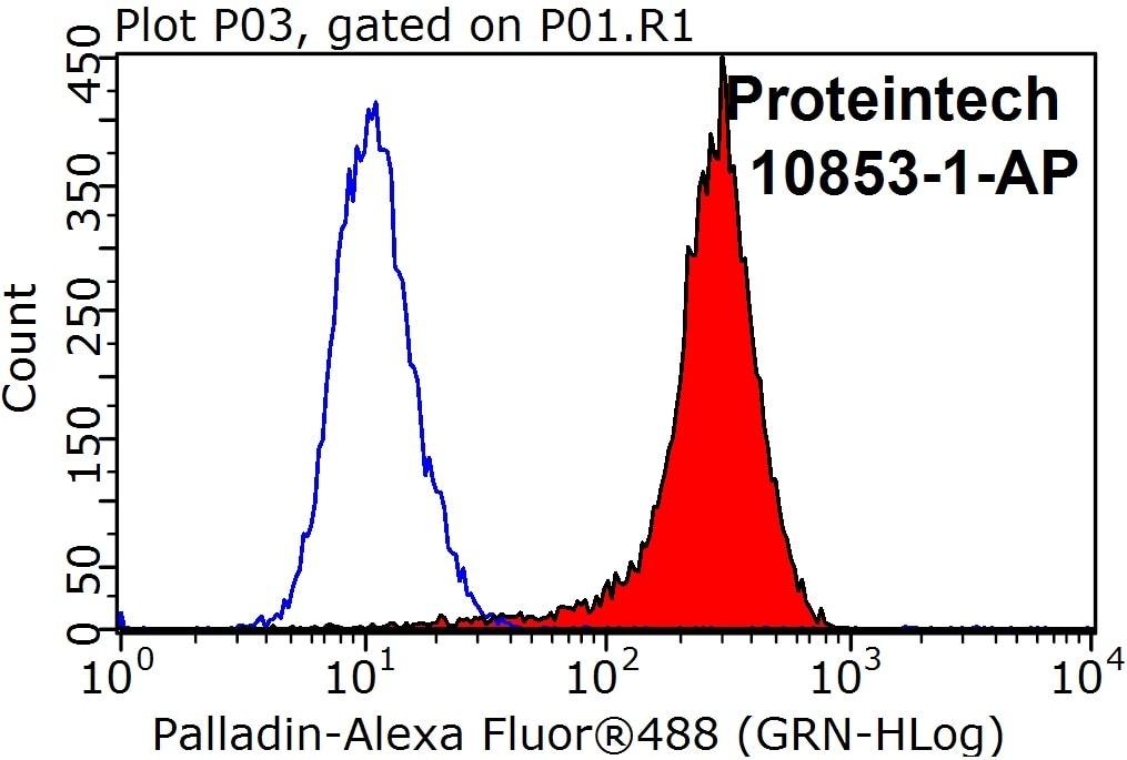 FC experiment of HeLa using 10853-1-AP