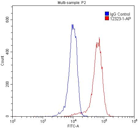 FC experiment of SH-SY5Y using 12323-1-AP