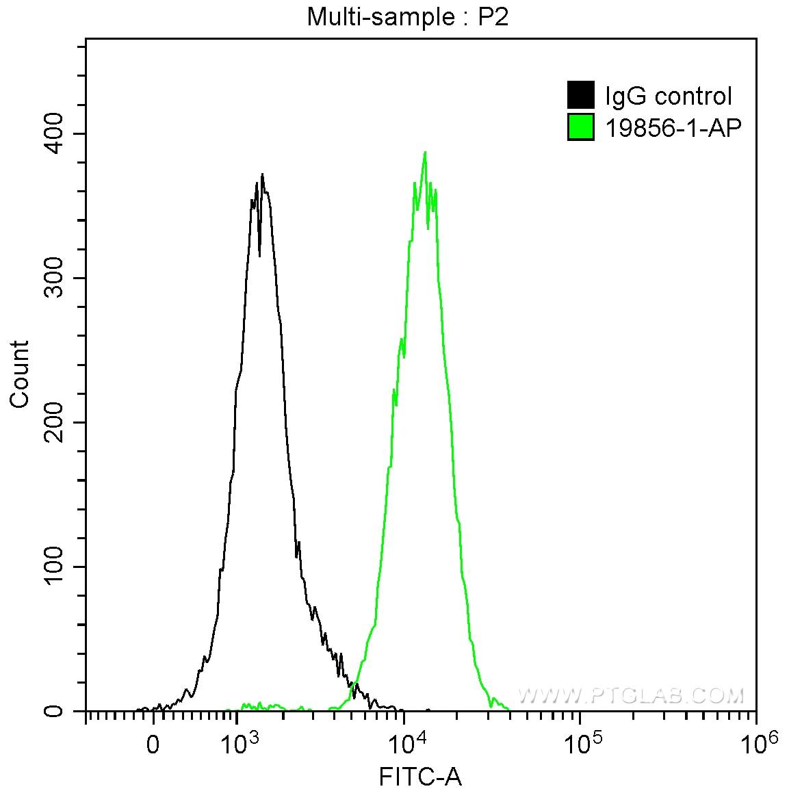 FC experiment of HepG2 using 19856-1-AP