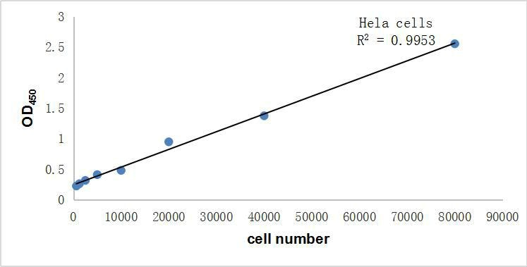 Cell Line:HeLa cell line <br>Medium:DMEM+10%FBS <br>Culture Conditions:37℃,5%CO2,add CCK-8 for 2h, 450nm R2=0.9953