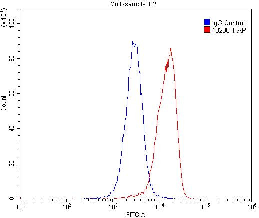 FC experiment of U-937 using 10286-1-AP
