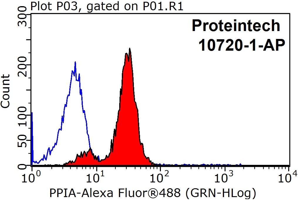 FC experiment of HeLa using 10720-1-AP