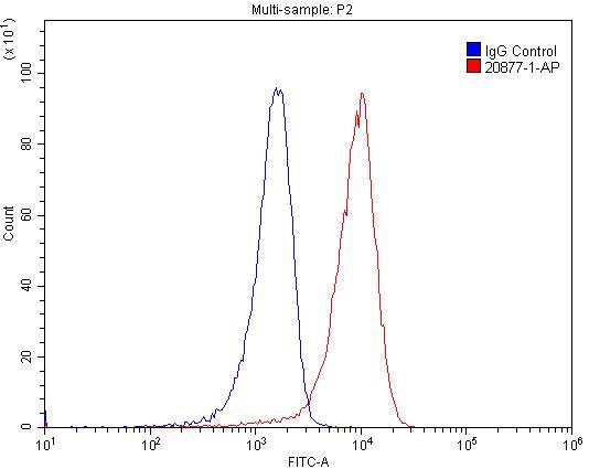 FC experiment of Jurkat using 20877-1-AP