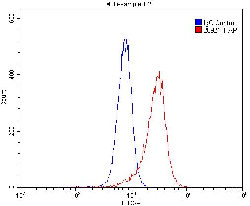 FC experiment of HL-60 using 20921-1-AP