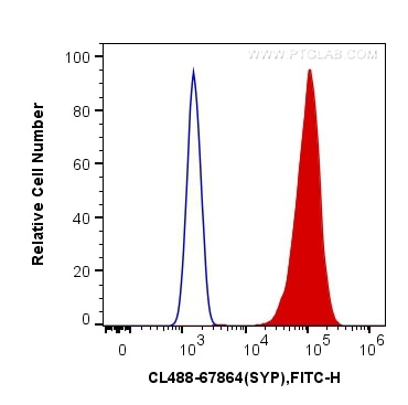 FC experiment of PC-12 using CL488-67864