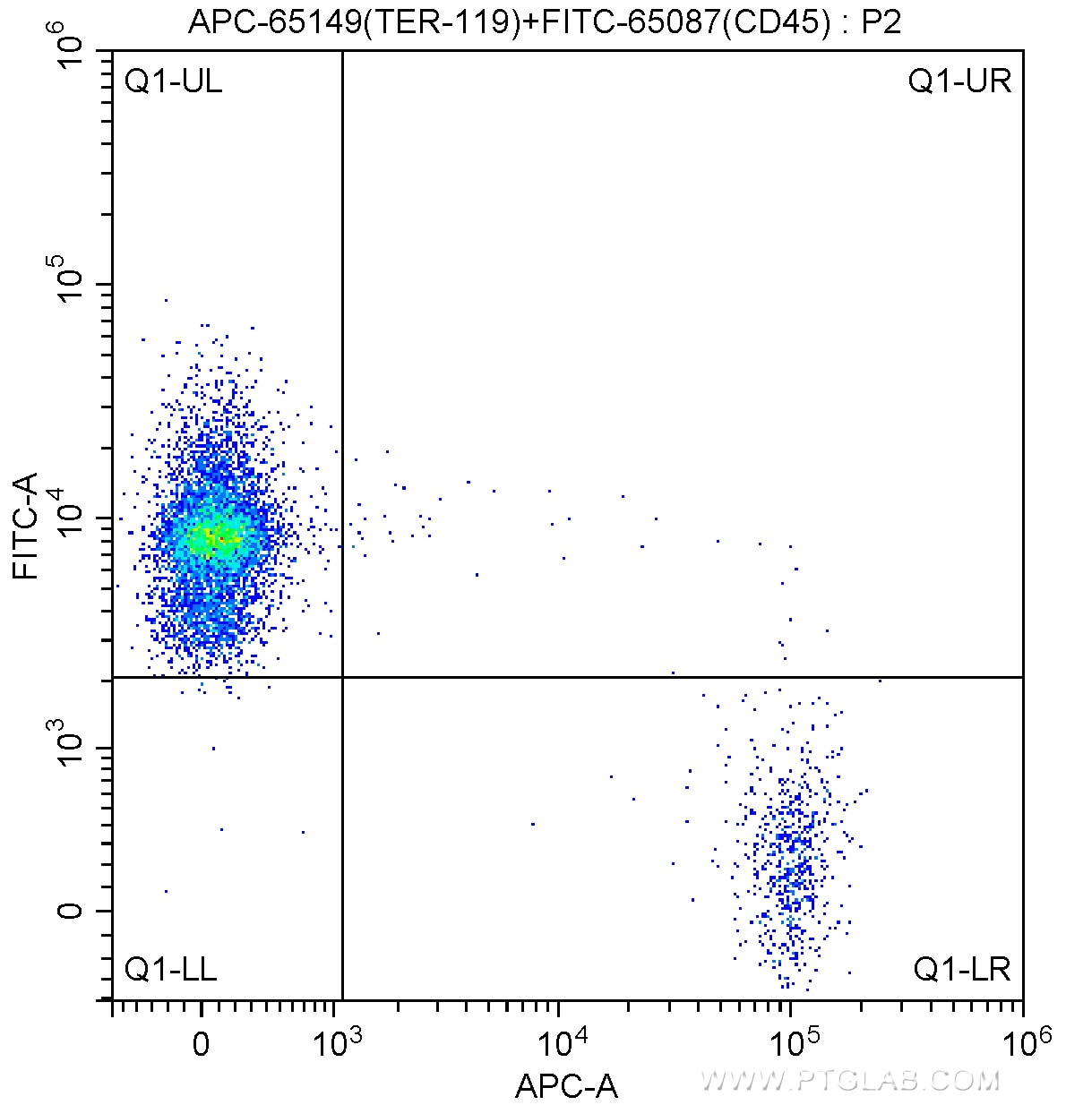 FC experiment of mouse bone marrow cells using APC-65149