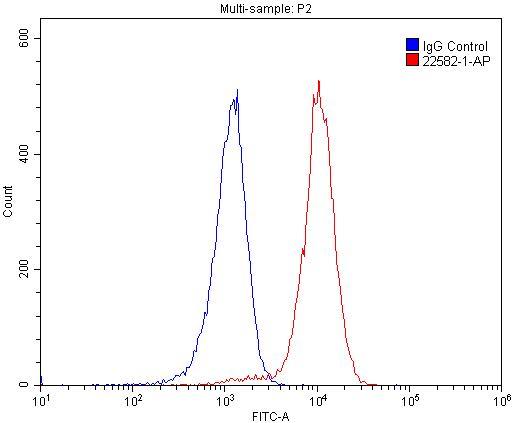 FC experiment of Raji using 22582-1-AP