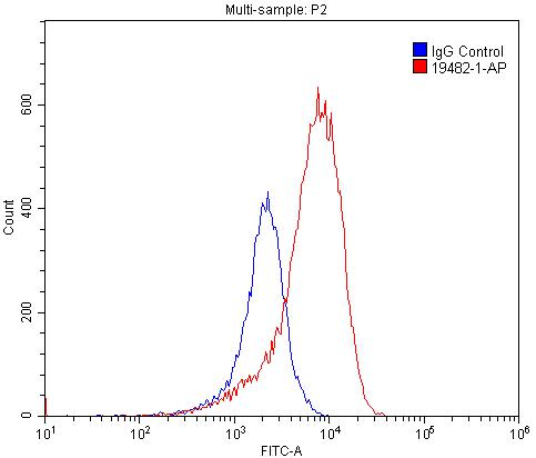 FC experiment of PC-3 using 19482-1-AP