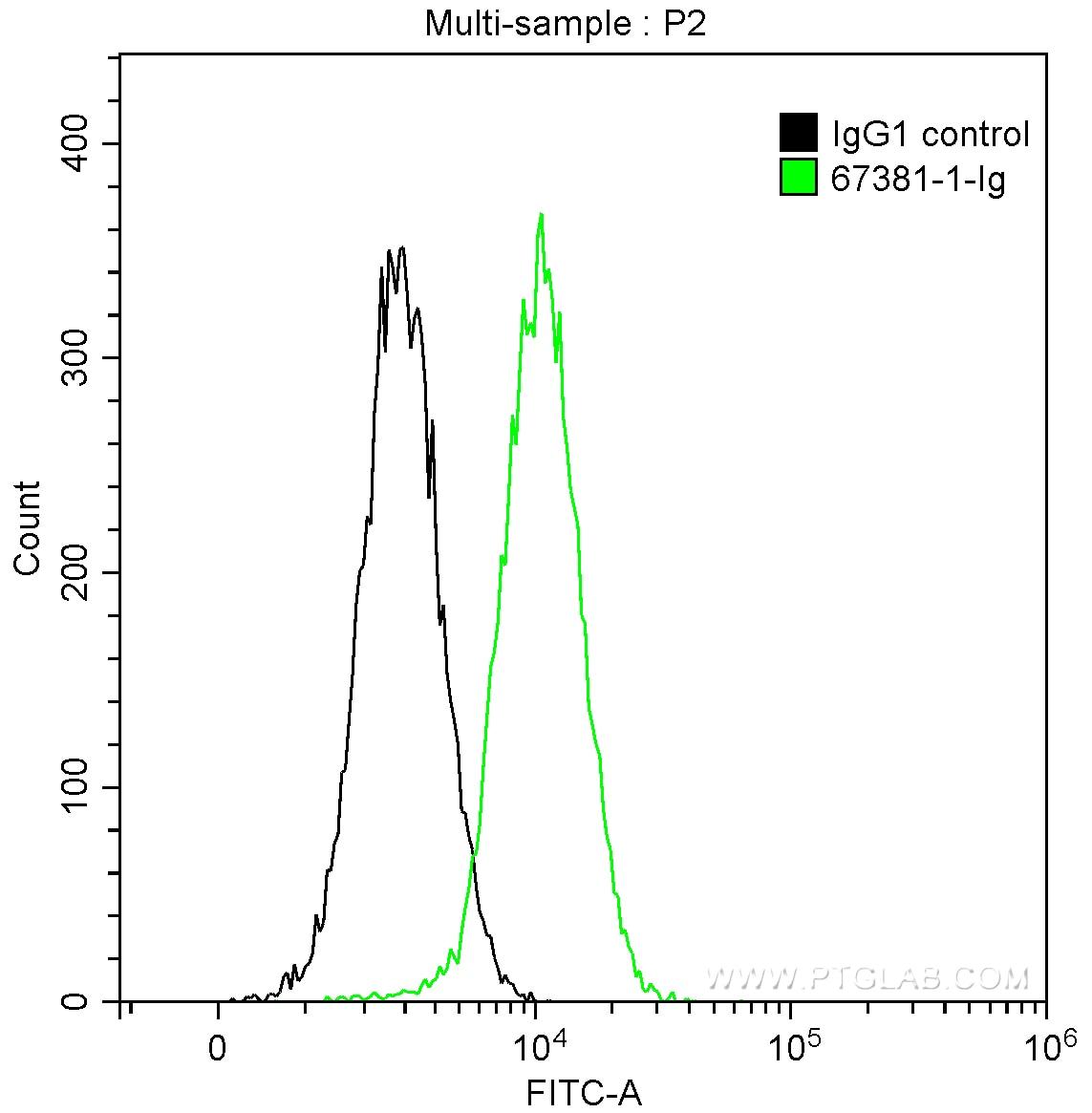 FC experiment of HeLa using 67381-1-Ig