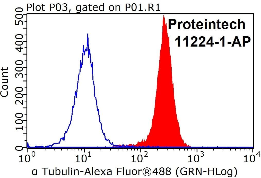 alpha Tubulin FC 11224-1-AP alpha Tubulin Antibody  alpha Tubulin, Alpha tubulin ubiquitous, alpha tubulin,a tubulin, TUBA1B, tubulin, tubulin, alpha 1b;FC