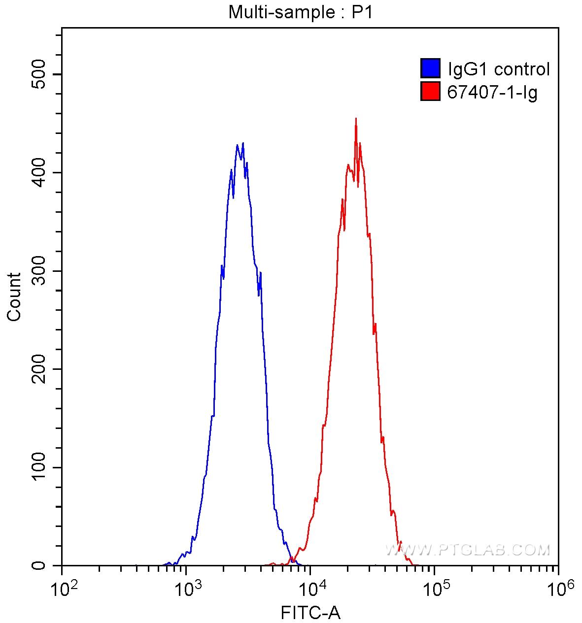 FC experiment of HUVEC using 67407-1-Ig