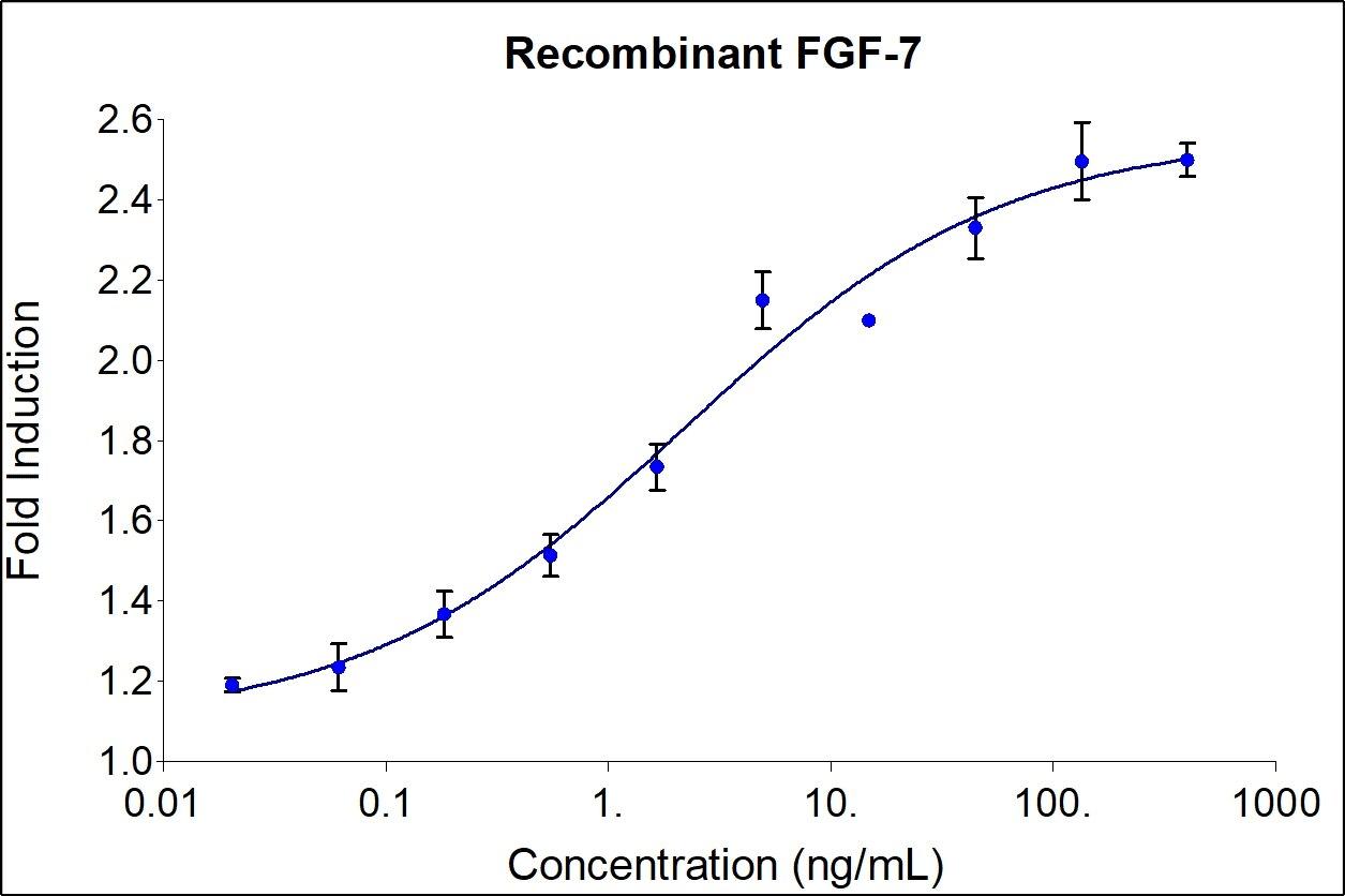Recombinant Human FGF-7 Graph