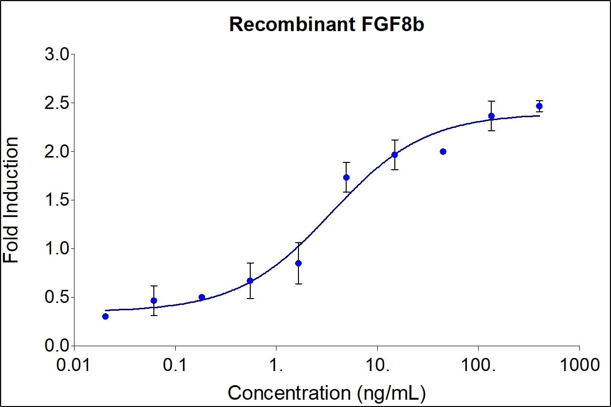 Recombinant Human FGF-8b Graph