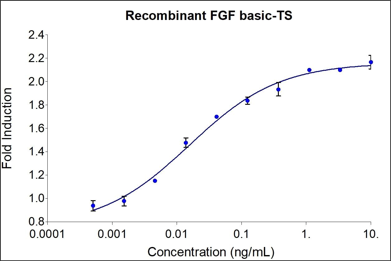 Recombinant Human FGF Basic-TS Graph