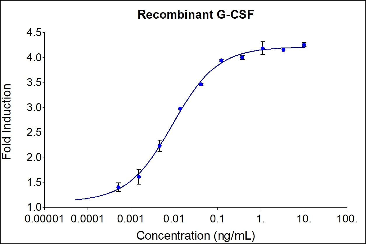 G-CSF activity assay