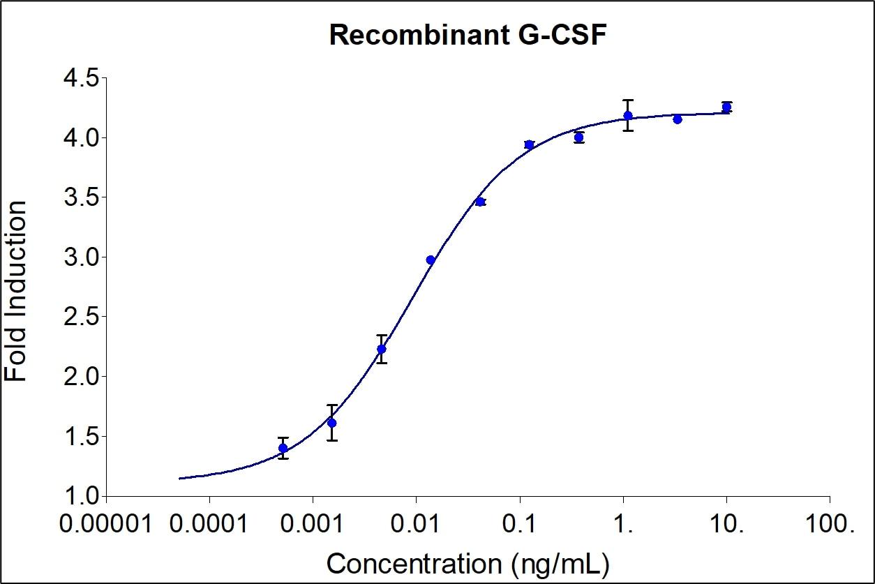 Recombinant Human G-CSF Graph