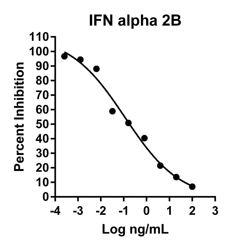 Recombinant Human IFN alpha 2B Graph