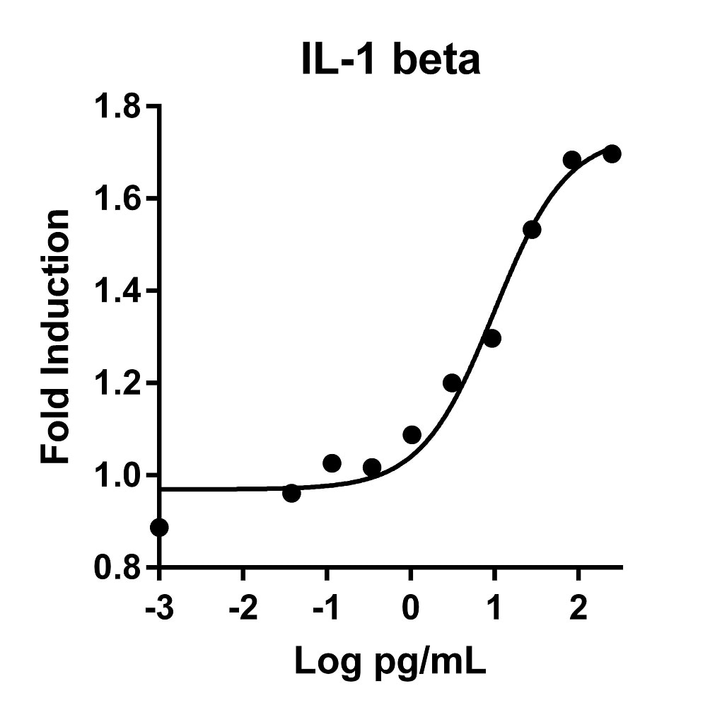 IL-1 beta activity assay