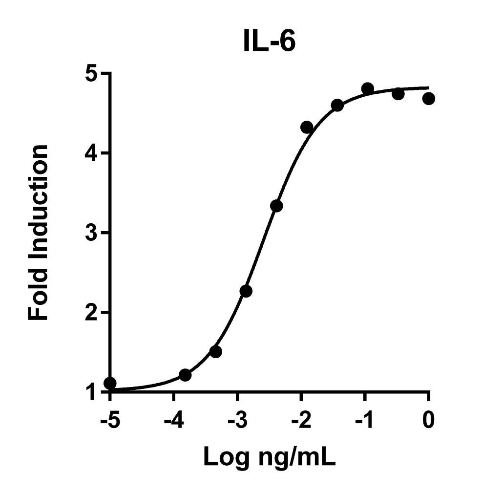 Recombinant Human IL-6 Graph