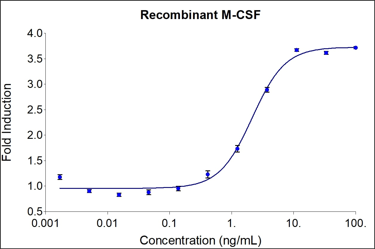 M-CSF activity assay