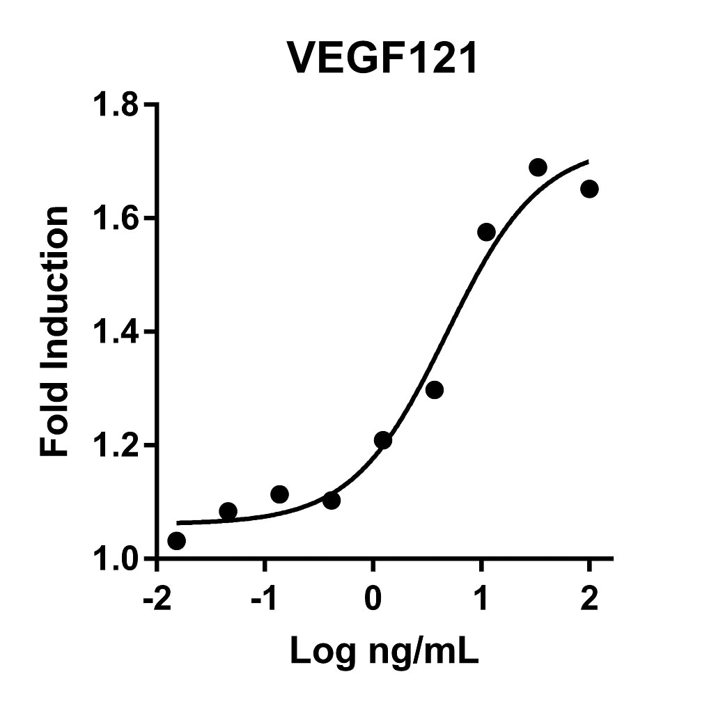 Recombinant Human VEGF121 Graph