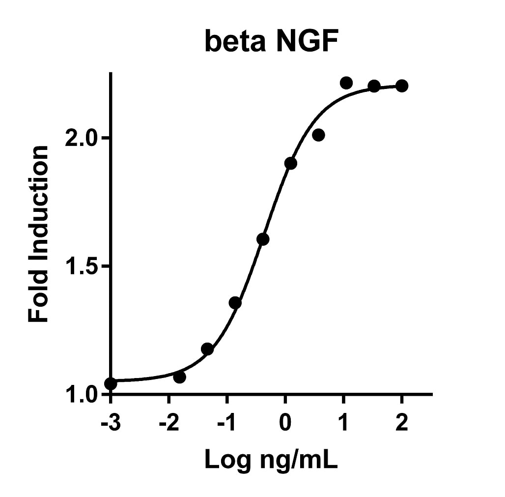 Recombinant Human beta NGF Graph