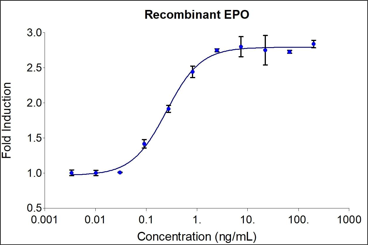 Recombinant Human EPO Graph