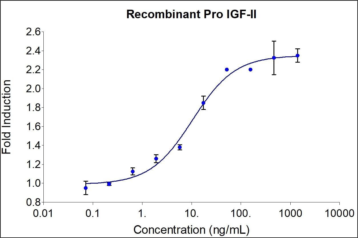 Recombinant Human pro-IGF-II Graph