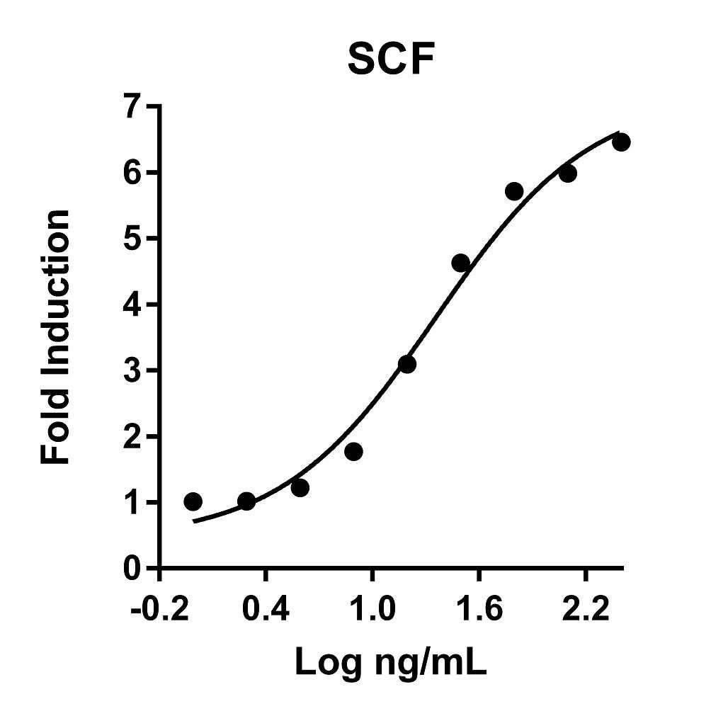 Recombinant Human SCF Graph