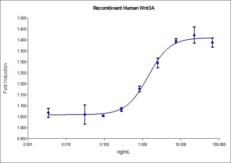 Recombinant Human Wnt3A Graph