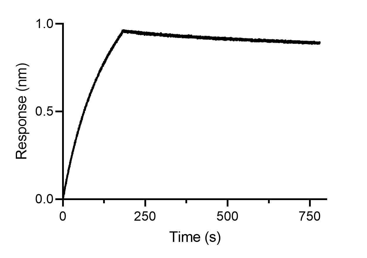 BLI binding kinetics of a human IgE antibody. 20 nM human IgE antibody was immobilized using Nano-CaptureLigand human IgE, VHH, biotinylated on FortéBio Streptavidin (SA) Biosensors. Human IgE is stably captured by the Nano-CaptureLigand with negligible dissociation.