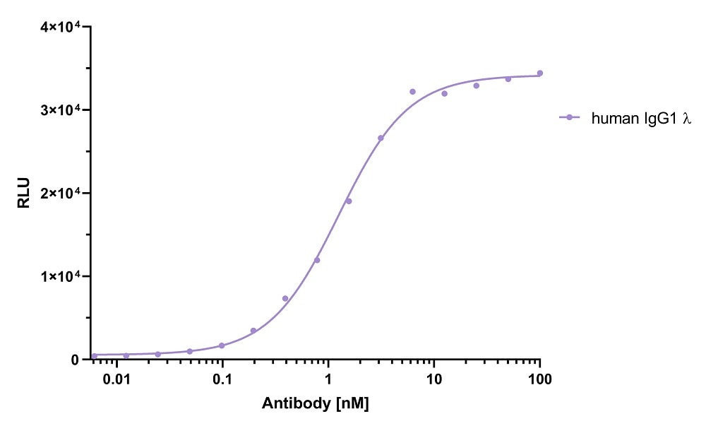 ELISA capture of human IgG1 lambda antibody using Nano-CaptureLigand human IgG/rabbit IgG, Fc-specific VHH, biotinylated. 50 nM Nano-CaptureLigand human IgG/rabbit IgG, Fc-specific VHH, biotinylated was used for coating on an avidin-coated MaxiSorp plate. Human IgG1 lambda antibody was titrated in a 1:2 dilution series and detected with an alkaline phosphatase-conjugated detection antibody.