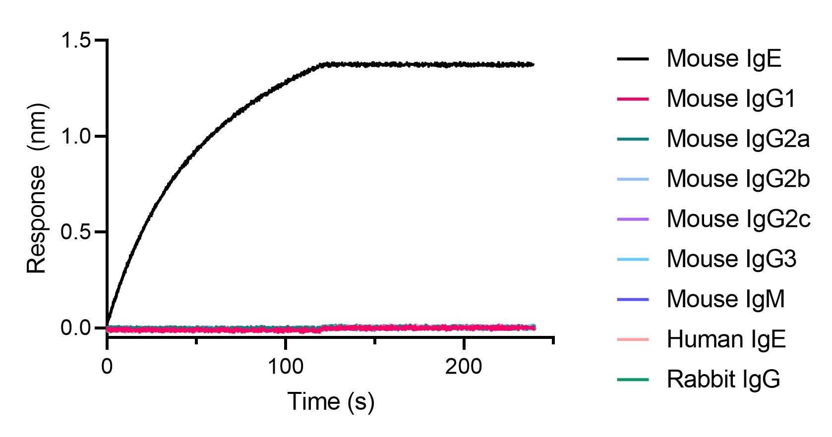 BLI binding kinetics of mouse, human and rabbit antibodies. 20 nM of mouse, human and rabbit antibodies were immobilized using Nano-CaptureLigand mouse IgE, VHH, biotinylated on FortéBio Streptavidin (SA) Biosensors. Only mouse IgE antibody is captured by the Nano-CaptureLigand with negligible dissociation.