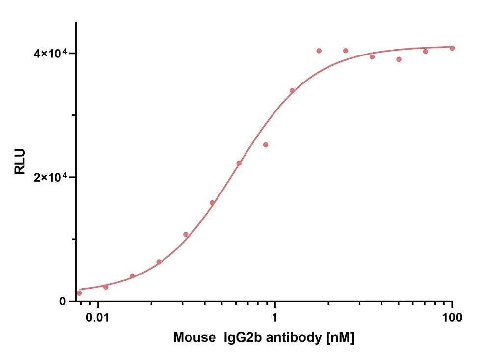 ELISA capture of mouse IgG2b antibody using Nano-CaptureLigand mouse IgG2b, Fc-specific VHH, biotinylated. 50 nM Nano-CaptureLigand mouse IgG2b, Fc-specific VHH, biotinylated was used for coating on an avidin-coated MaxiSorp plate. Mouse IgG2b antibody was titrated in a 1:2 dilution series and detected with an alkaline phosphatase-conjugated detection antibody.