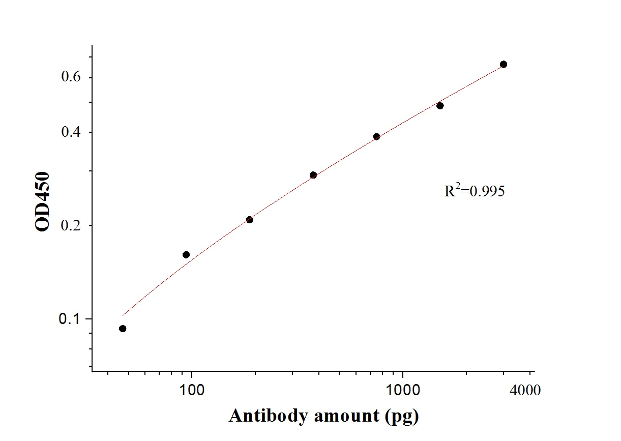 ELISA experiment of Recombinant protein using 28867-1-AP