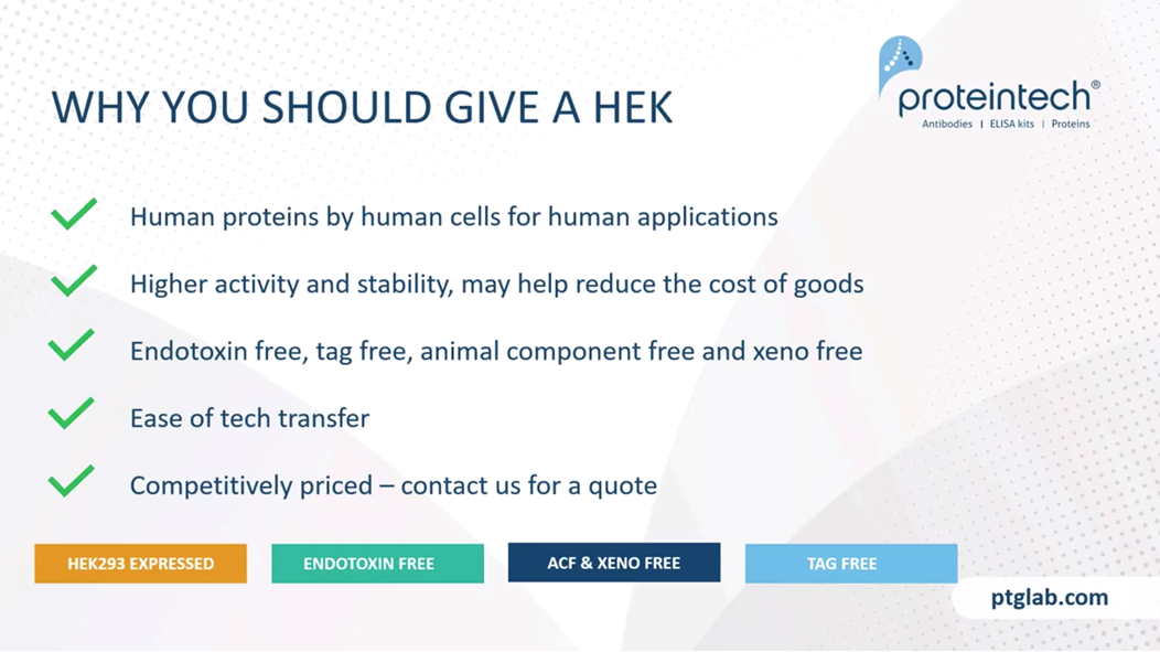 summary on why you should use HEK293