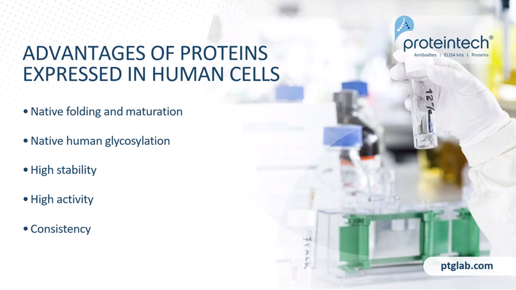 The advantages of proteins expressed in human cells