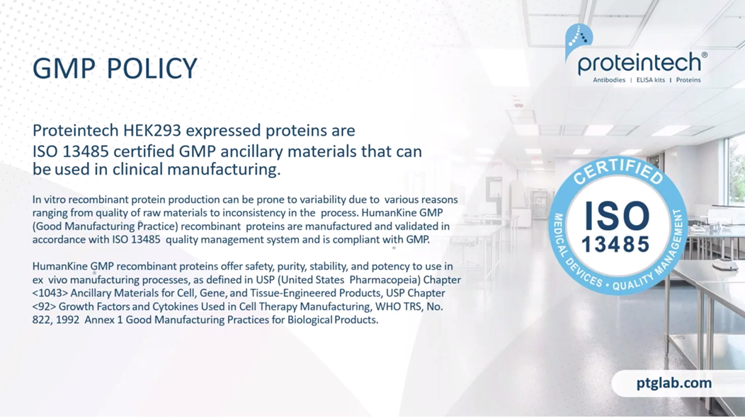 Proteintech HEK293 expressed proteins are ISO13485 certified GMP ancillary materials that can be used in clinical manufacturing