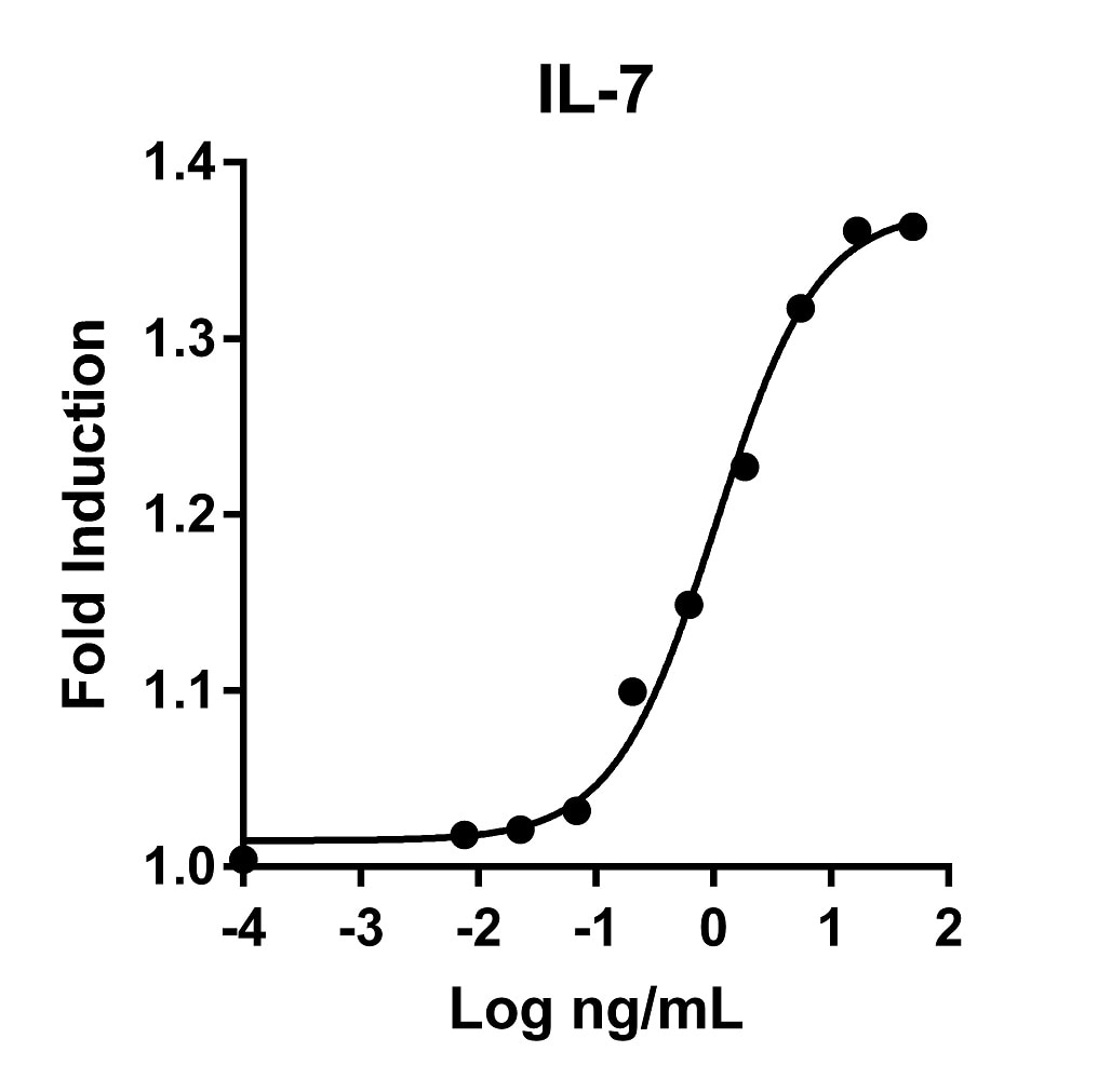 The specific activity was determined by the dose-dependent stimulation of the proliferation of murine 2E8 cells using Promega CellTiter96® Aqueous Non-Radioactive Cell Proliferation Assay.